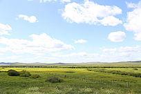 额尔古纳湿地景观