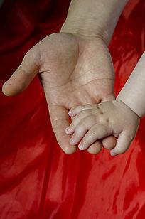 红底父亲的手托着孩子的小手