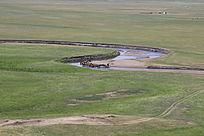 呼伦贝尔牧场图片