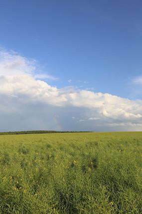 呼伦贝尔田园景观