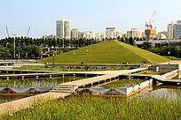 厦门海湾公园绿野金字塔
