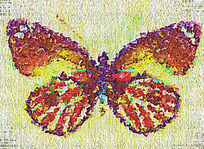 高清蝴蝶画图片