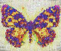 蝴蝶高端装饰画