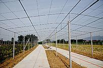 遮阳棚钢结构架