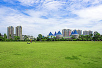 凤岭乐园草地