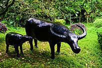 两只牛雕塑