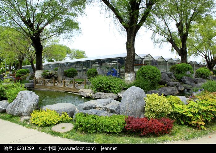 园林景观手绘石头