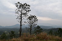 虎岭山摄影