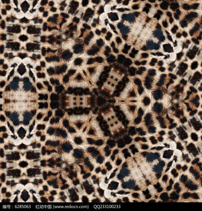 豹纹印花花型图片