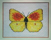 黄色蝴蝶图案十字绣