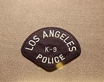 美国警察臂章扇形文字图案
