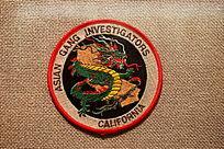 美国警察臂章圆形绿龙图案