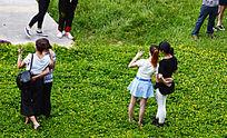 站在花草上拍照的人们