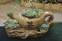 工艺茶壶盆景