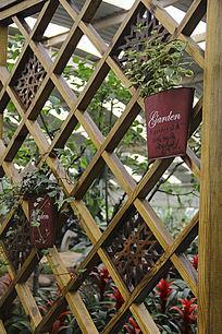 景观植物墙