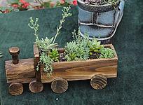 盆栽小火车