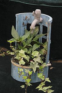 水龙头盆栽