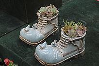 鞋子盆栽园艺