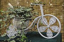 自行车盆景