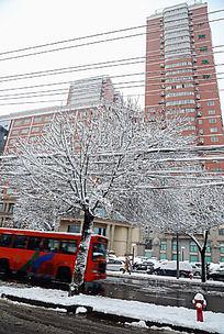 城市雪景街道
