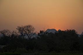桂林树林落日红光