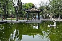 公园绿水凉亭