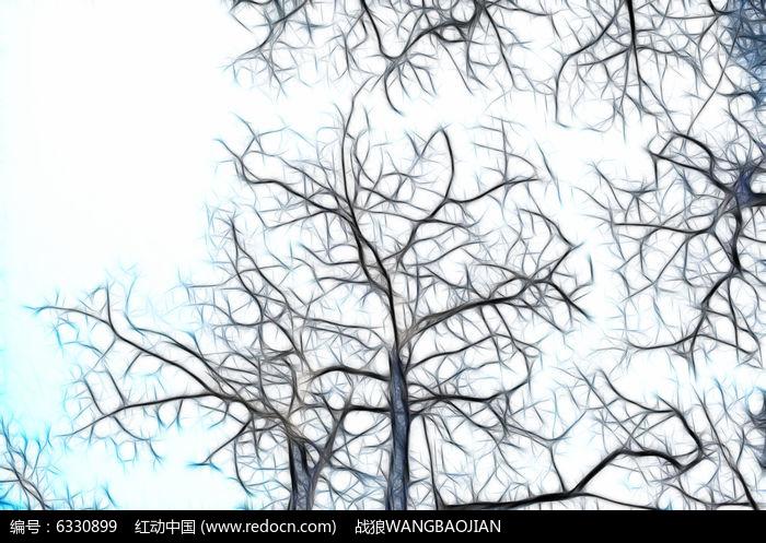 枯树蓝天抽象画