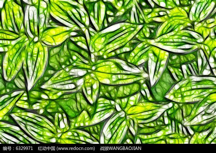绿萝灯笼手绘插画