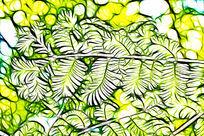 水杉树林叶脉