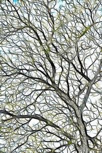 树林抽象艺术画