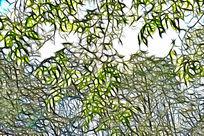 树林线条艺术画