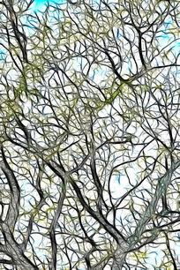 艺术树林无框画
