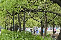 公园休闲人们
