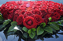 玫瑰花组成的心形图案