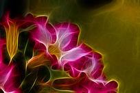 沙漠玫瑰装饰画