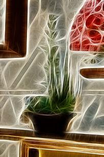 多肉植物盆栽艺术画