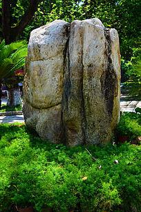 花草中的石头
