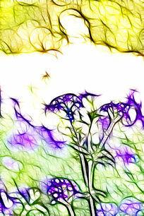细叶美女樱抽象画