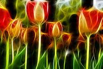 红黄郁金香艺术画