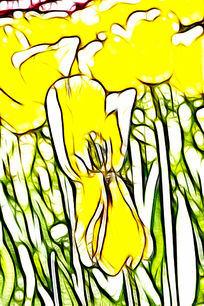 黄普瑞斯玛郁金香装饰画抽象画艺术画