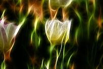 镶红边郁金香装饰画艺术画抽象画无框画