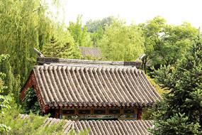 北京大观园仿古建筑屋顶图片