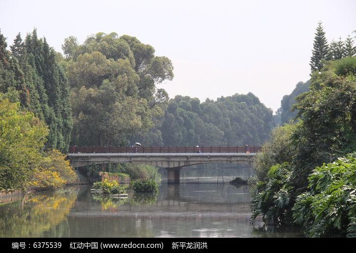 被污染的城市河流高清图片下载 编号6375539 红动网
