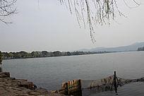美丽的湖景意向图