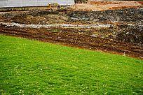 生态公园绿化建设