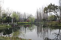 生态湖岸景观意向图