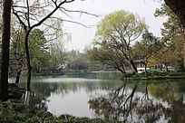 中式自然湖景意向图