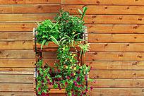 木板墙花卉