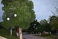 赣州滨江公园夜色