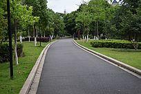 美丽的城市绿道